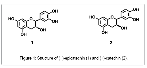natural-products-chemistry-research-epicatechin-catechin