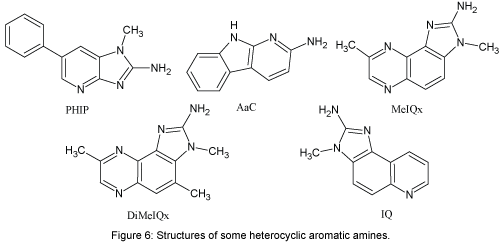 natural-products-chemistry-research-heterocyclic-aromatic