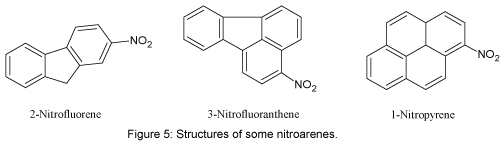 natural-products-chemistry-research-some-nitroarenes