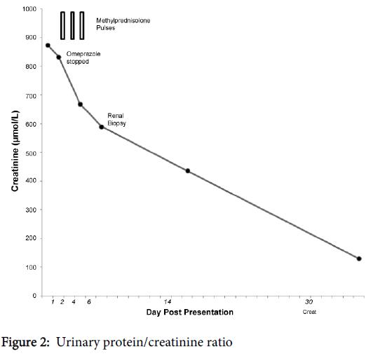 nephrology-therapeutics-protein-creatinine-ratio