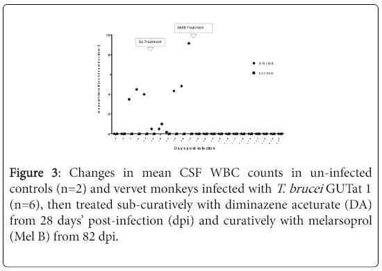 neuroinfectious-diseases-CSF-WBC