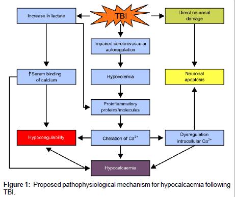 neurological-disorders-pathophysiological-mechanism