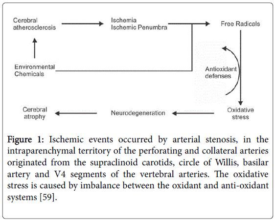neurology-neurophysiology-Ischemic-events
