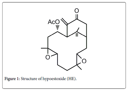 neurology-neurophysiology-Structure-hypoestoxide