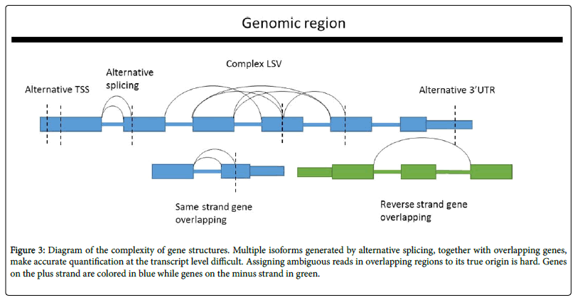 next-generation-sequencing-applications-Diagram-complexity-gene-structures