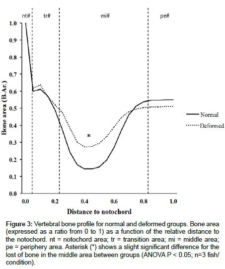 next-generation-sequencing-applications-Vertebral-bone-profile