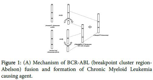 nuclear-medicine-Chronic-Myeloid-Leukemia