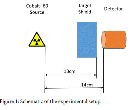 nuclear-medicine-radiation-therapy-Schematic-experimental-setup