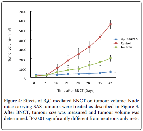 nuclear-medicine-radiation-tumour-volume