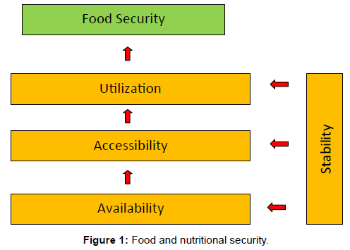 nutrition-food-sciences-Food-nutritional-security