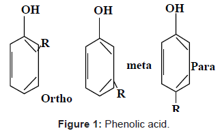 nutrition-food-sciences-Phenolic-acid