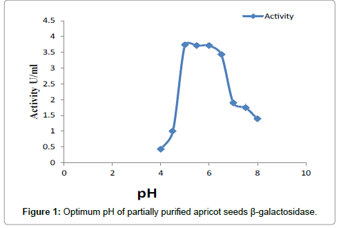 nutrition-food-sciences-apricot-seeds