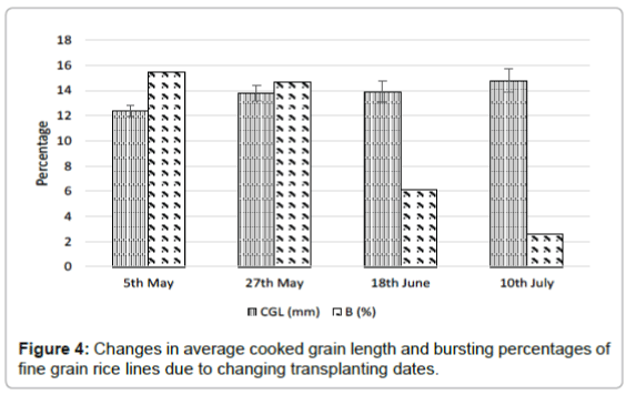nutrition-food-sciences-cooked-grain-length