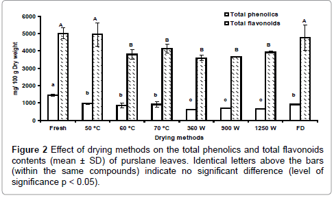 nutrition-food-sciences-drying-phenolics