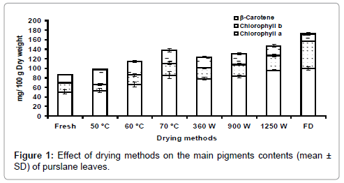nutrition-food-sciences-drying-pigments