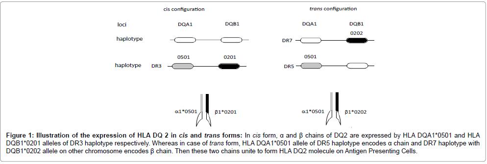 nutrition-food-sciences-haplotype-molecule