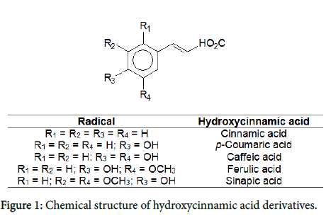nutrition-food-sciences-hydroxycinnamic