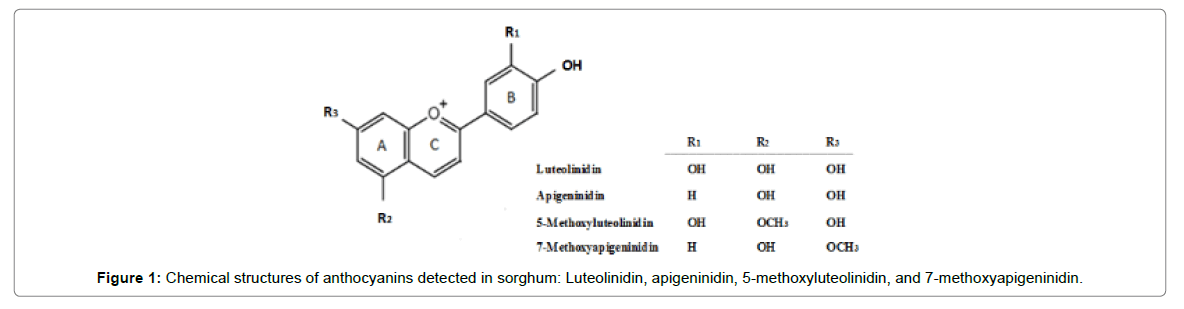 nutrition-food-sciences-methoxyapigeninidin