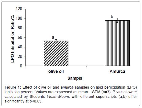 nutrition-food-sciences-olive-lipid