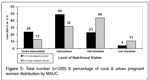 nutrition-food-sciences-percentage