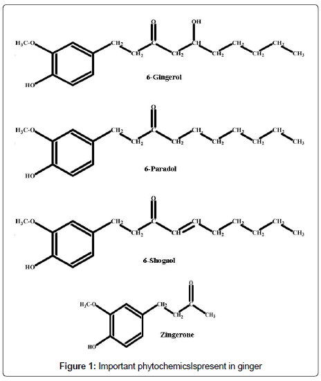 nutrition-food-sciences-phytochemicslspresent