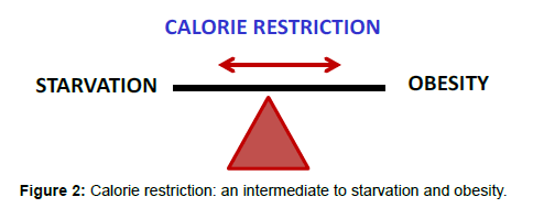 nutritional-disorders-therapy-Calorie-restriction