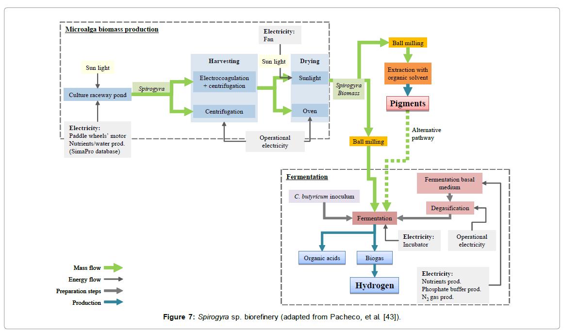 oceanography-biorefinery-adapted