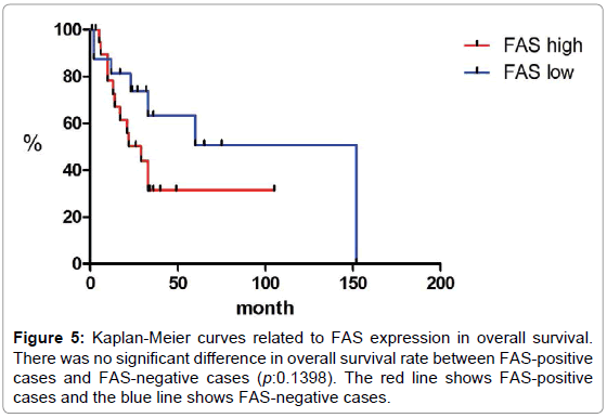 oncology-cancer-case-reports-Kaplan-Meier-expression