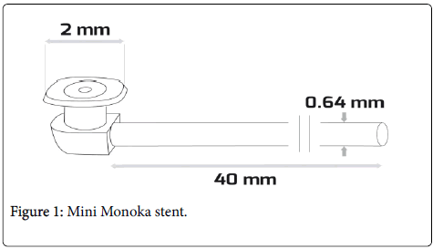 optometry-Mini-Monoka-stent