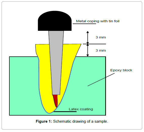 oral-hygiene-health-schematic-drawing-sample