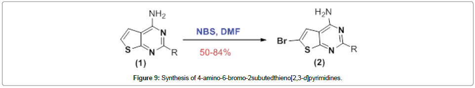 organic-chemistry-current-research-amino-bromo