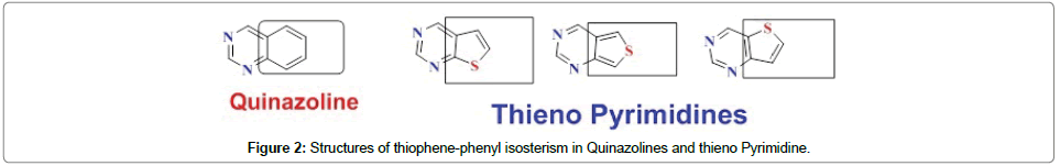 organic-chemistry-current-research-thiophene-phenyl