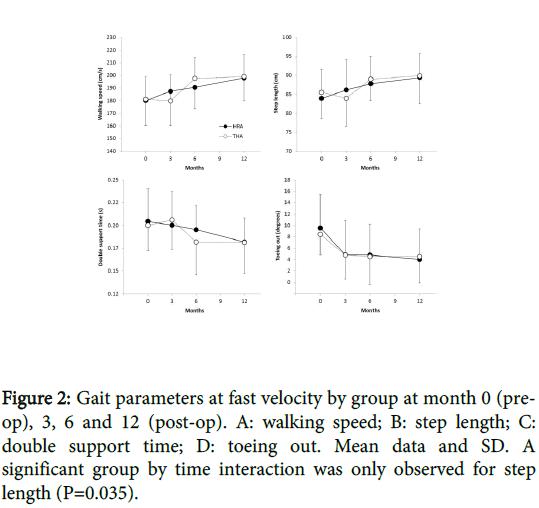 orthopedic-muscular-system-gait-velocity-interaction