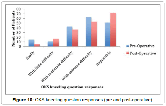 orthopedic-muscular-system-oks-kneeling-question-responses
