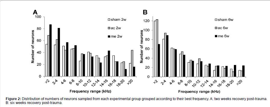 otolaryngology-experimental-group