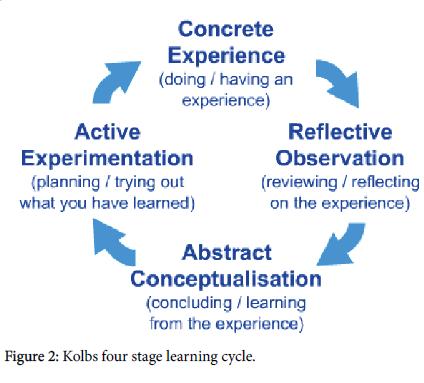 otolaryngology-learning-cycle