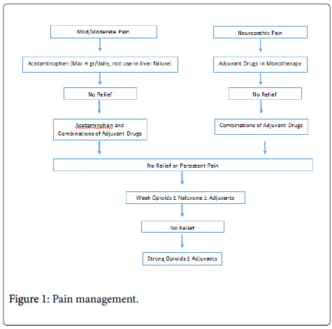 palliative-care-medicine-Pain-management