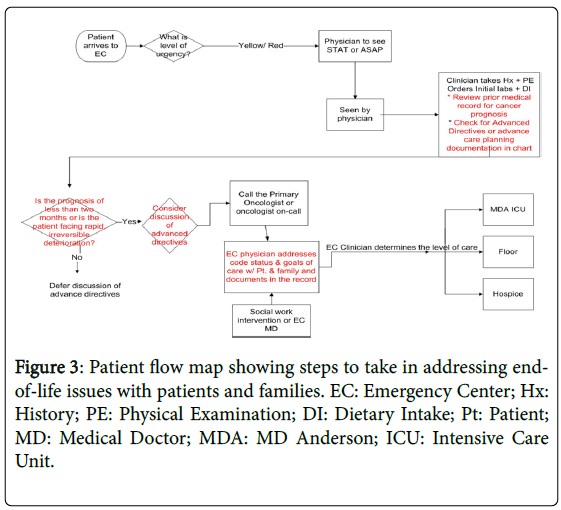 palliative-care-medicine-Patient-flow-map