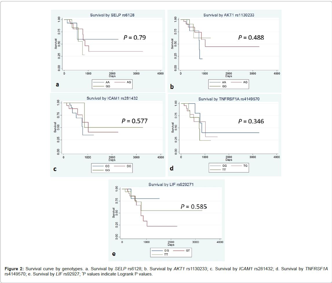 palliative-care-medicine-Survival-curve