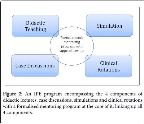 palliative-care-medicine-mentoring-program