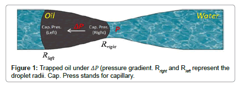 petroleum-environmental-biotechnology-Trapped-oil-under-droplet-radii