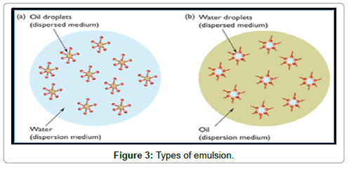 petroleum-environmental-biotechnology-Types-emulsion