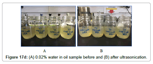 petroleum-environmental-biotechnology-after-ultrasonication