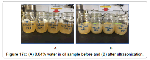 petroleum-environmental-biotechnology-after-ultrasonication-plot