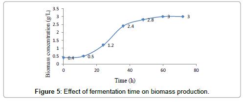 petroleum-environmental-biotechnology-fermentation-time-biomass-production