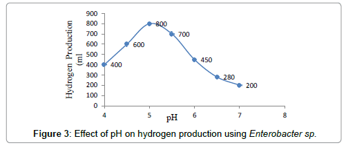 petroleum-environmental-biotechnology-hydrogen-production-Enterobacter