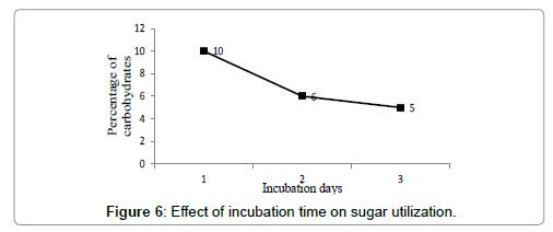 petroleum-environmental-biotechnology-incubation-time-sugar-utilization