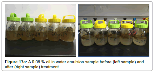 petroleum-environmental-biotechnology-oil-water-emulsion-sample