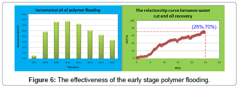 petroleum-environmental-biotechnology-polymer-flooding