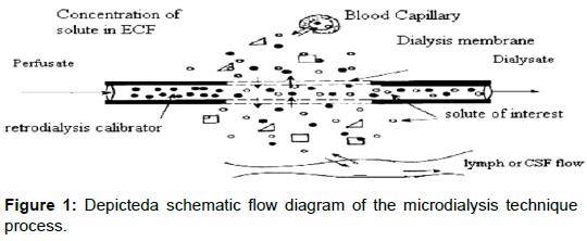 pharmaceutica-analytica-acta-Depicteda-schematic-flow